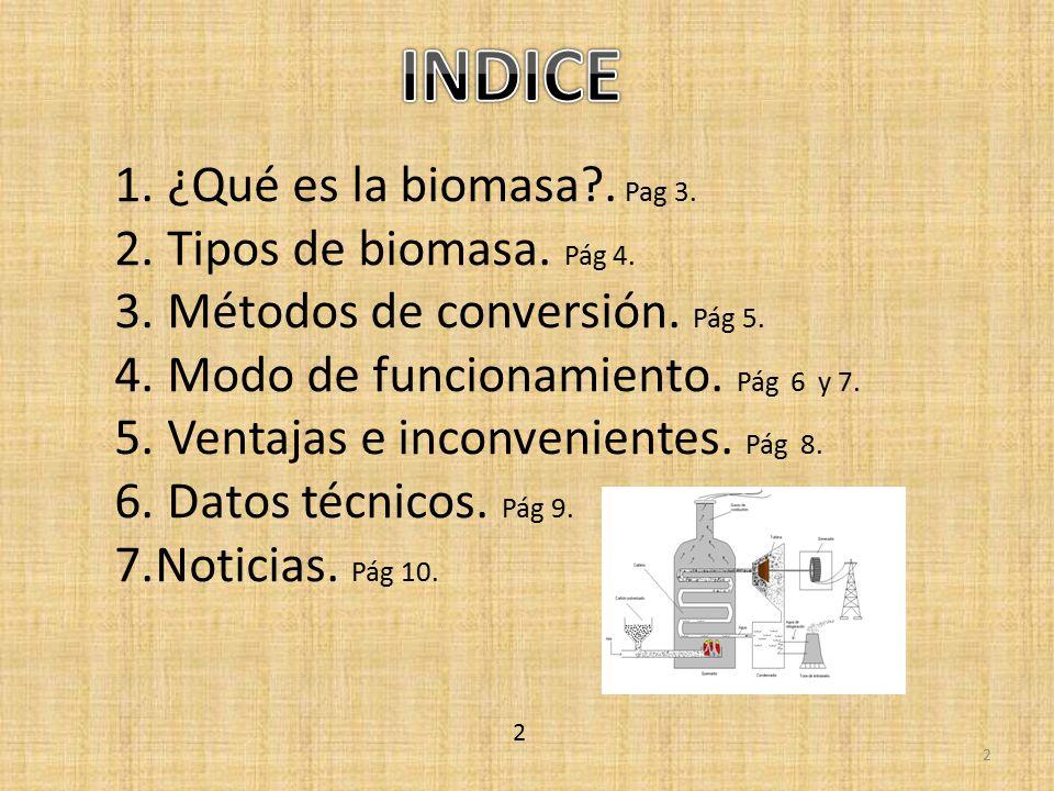 INDICE ¿Qué es la biomasa . Pag 3. Tipos de biomasa. Pág 4.