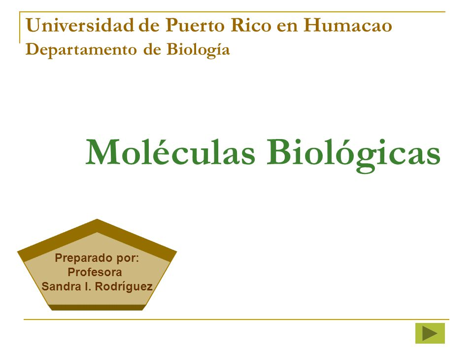Moléculas Biológicas Universidad de Puerto Rico en Humacao