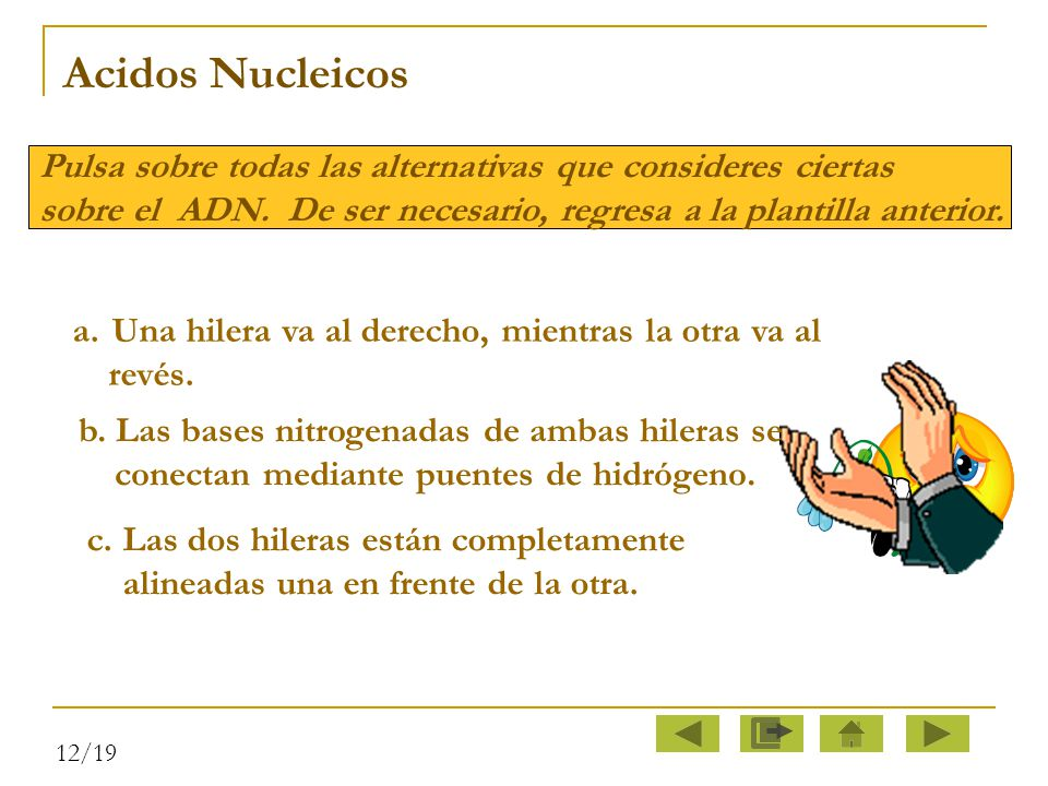 Acidos Nucleicos Pulsa sobre todas las alternativas que consideres ciertas. sobre el ADN. De ser necesario, regresa a la plantilla anterior.