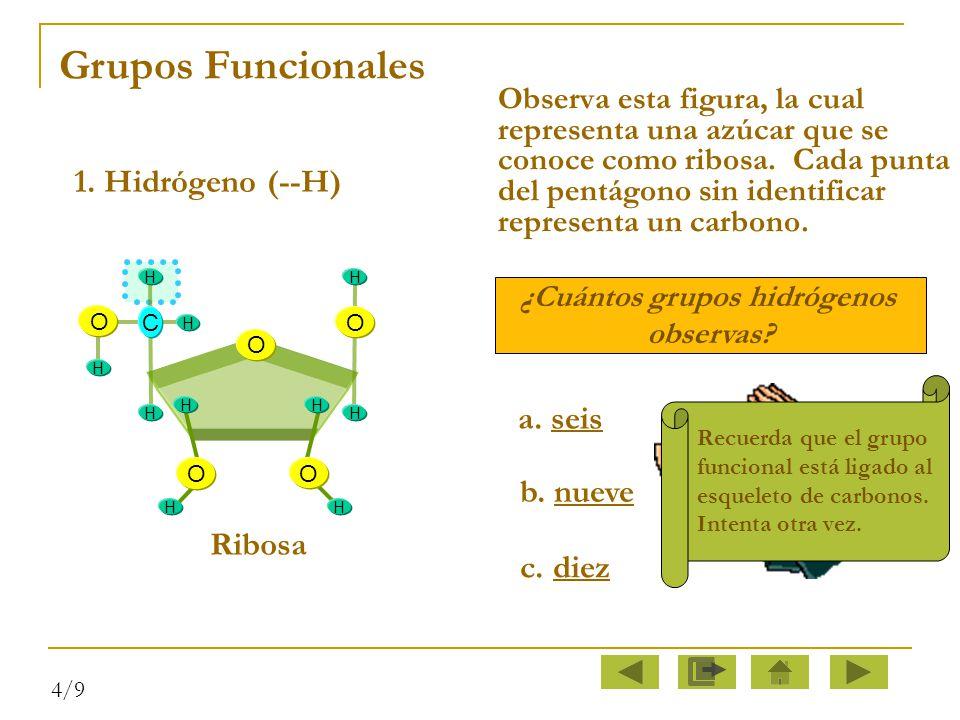 ¿Cuántos grupos hidrógenos
