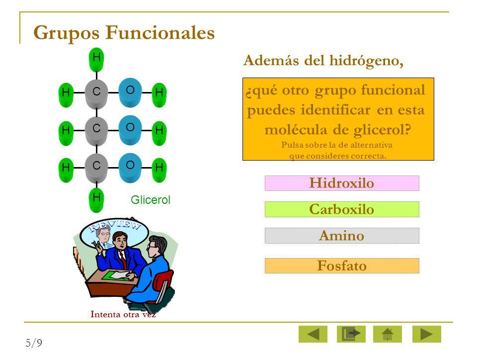 Grupos Funcionales Además del hidrógeno, ¿qué otro grupo funcional