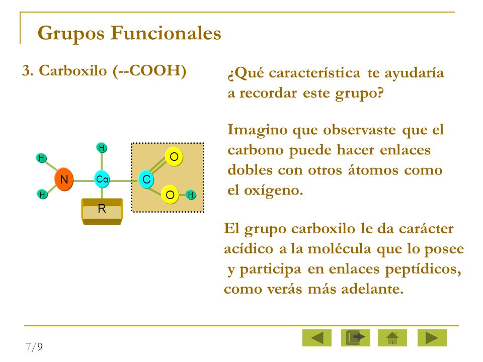 Grupos Funcionales 3. Carboxilo (--COOH)