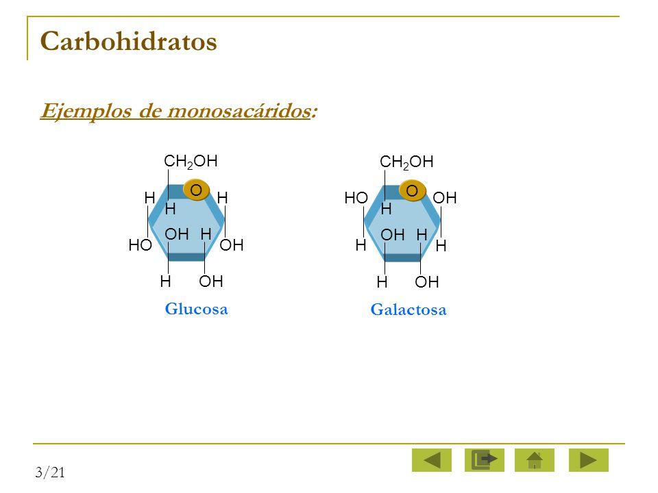 Carbohidratos Ejemplos de monosacáridos: Glucosa Galactosa O H CH2OH