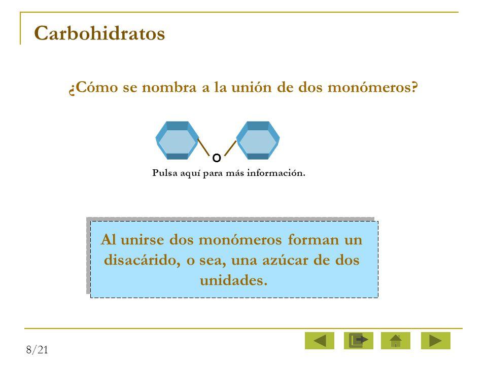 Carbohidratos ¿Cómo se nombra a la unión de dos monómeros