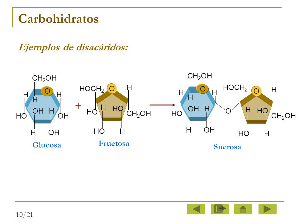 Carbohidratos Ejemplos de disacáridos: + Fructosa Glucosa Sucrosa O H