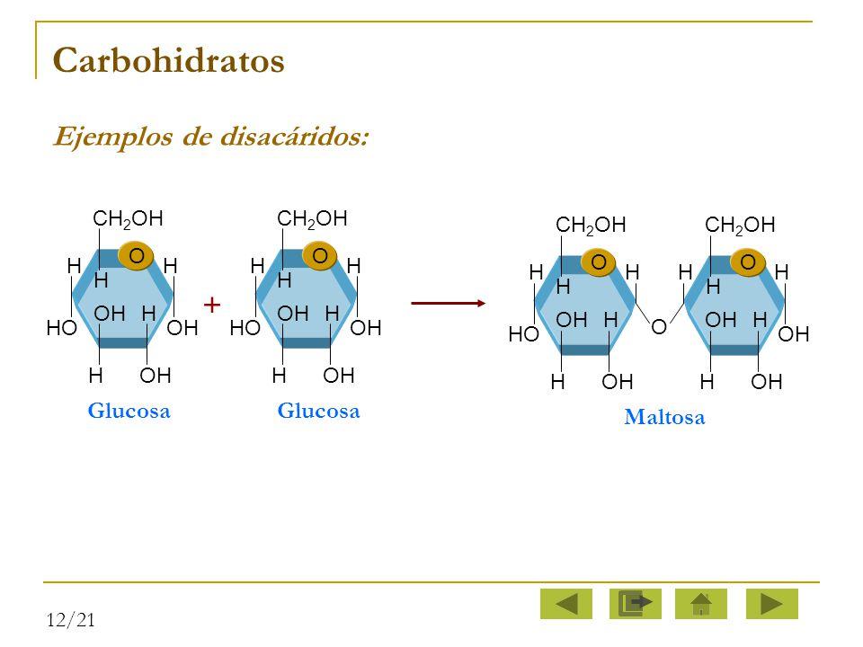 Carbohidratos Ejemplos de disacáridos: + Glucosa Maltosa O H CH2OH HO