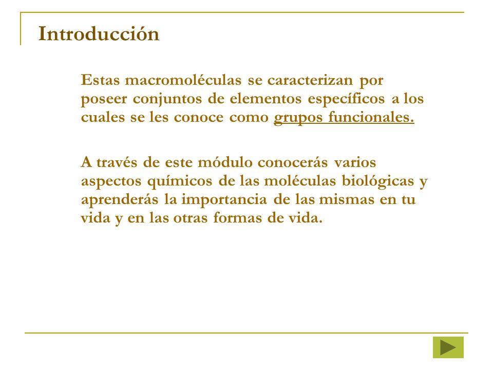 Introducción Estas macromoléculas se caracterizan por poseer conjuntos de elementos específicos a los cuales se les conoce como grupos funcionales.