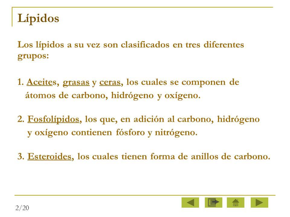Lípidos Los lípidos a su vez son clasificados en tres diferentes grupos: 1. Aceites, grasas y ceras, los cuales se componen de.