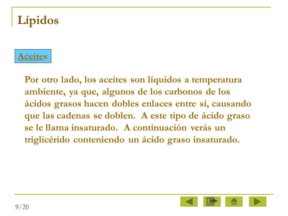 Lípidos Aceites.