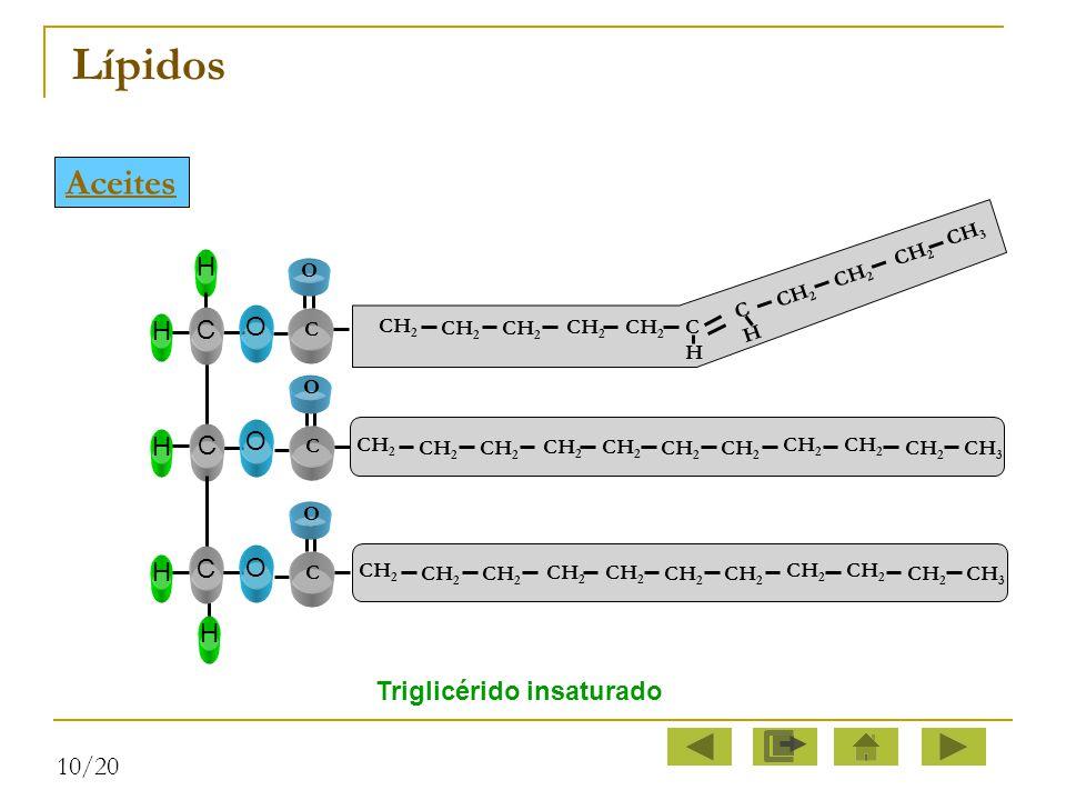 Lípidos Aceites C O H Triglicérido insaturado 10/20 C H CH2 CH3 O C