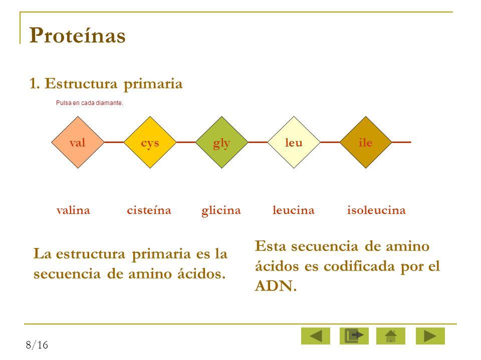 Proteínas 1. Estructura primaria