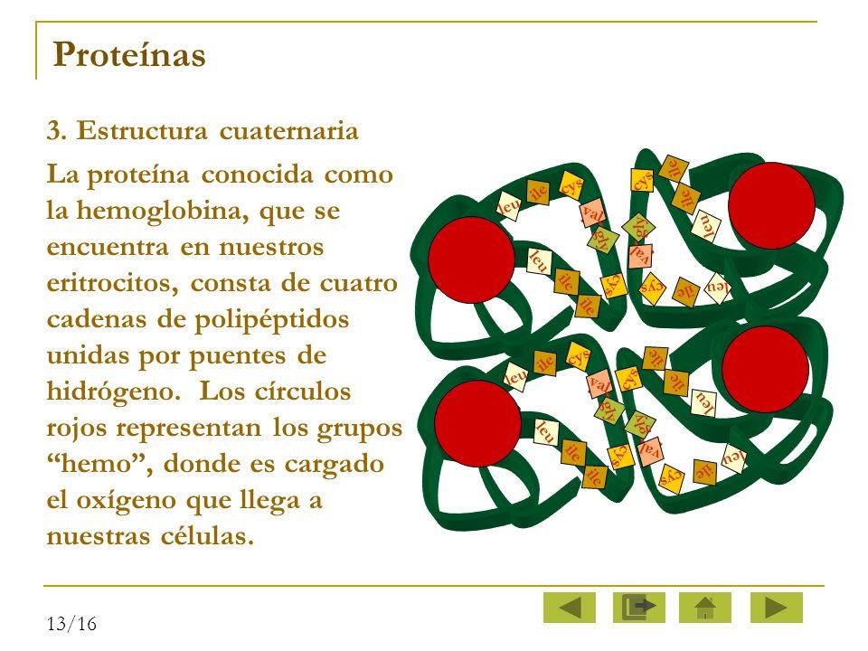 Proteínas 3. Estructura cuaternaria