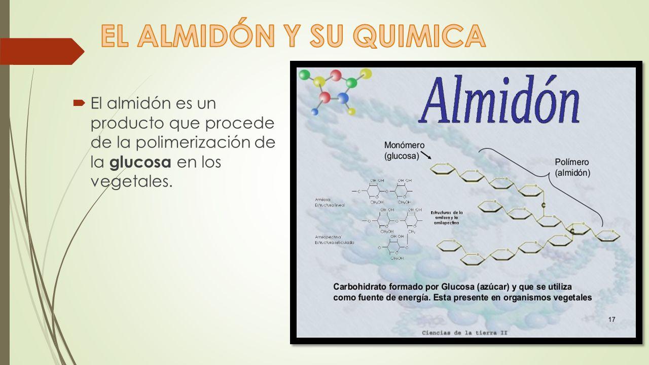EL ALMIDÓN Y SU QUIMICA El almidón es un producto que procede de la polimerización de la glucosa en los vegetales.
