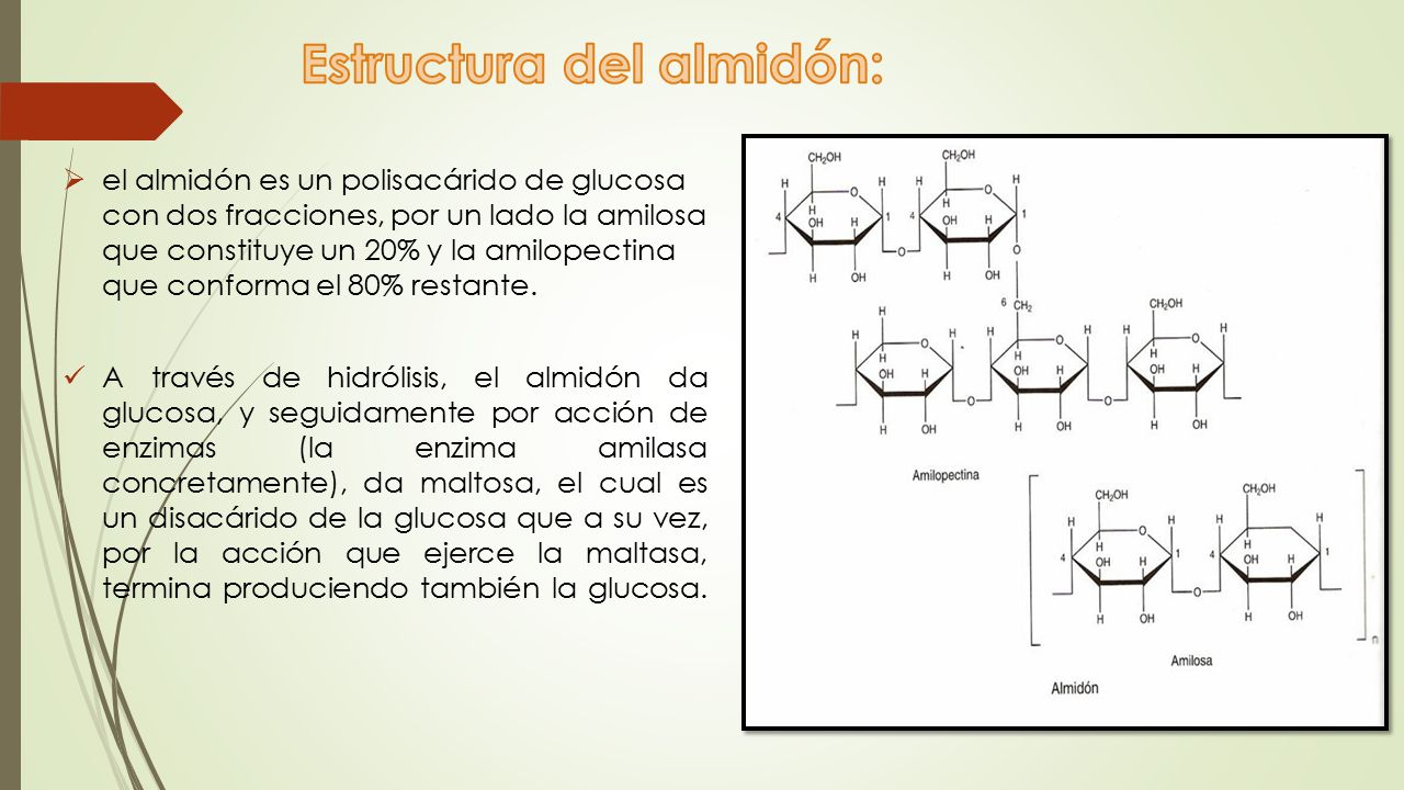 Estructura del almidón: