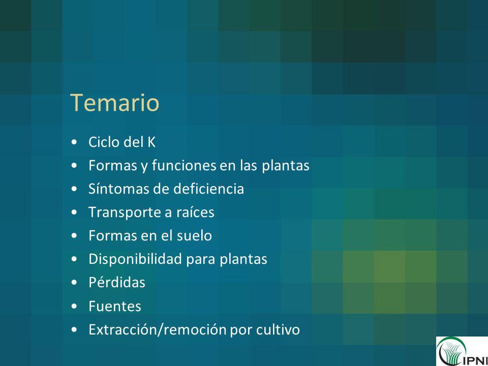 Temario Ciclo del K Formas y funciones en las plantas