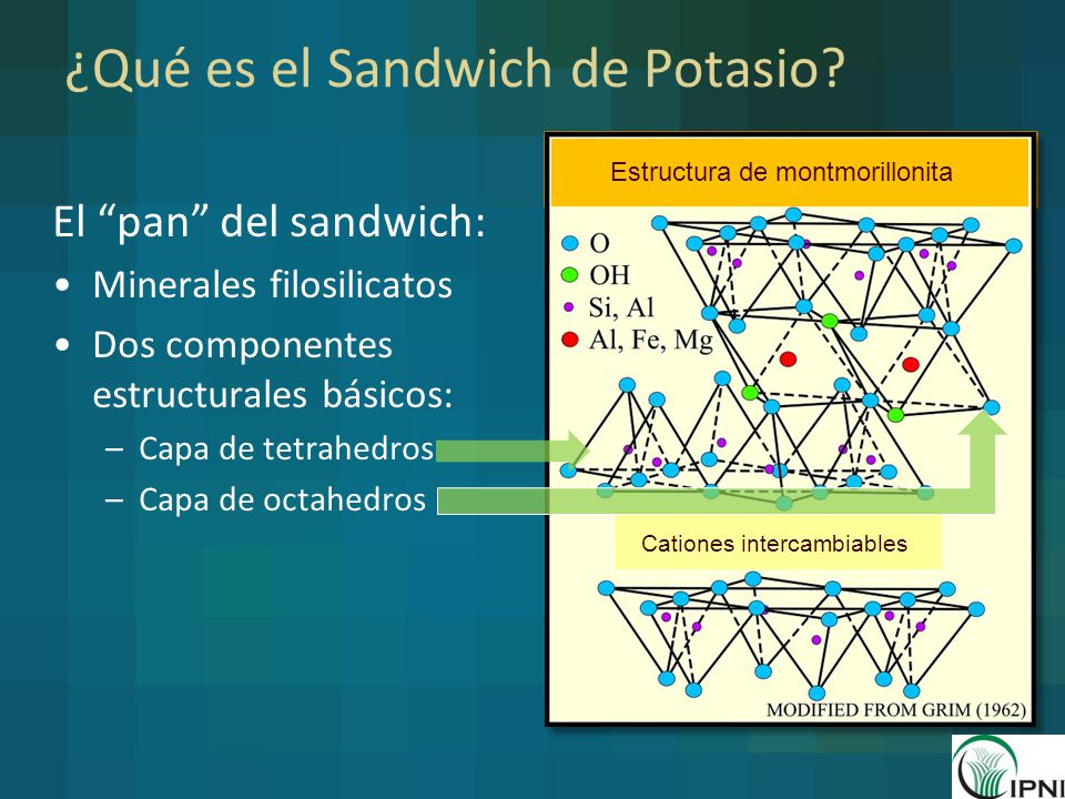 ¿Qué es el Sandwich de Potasio