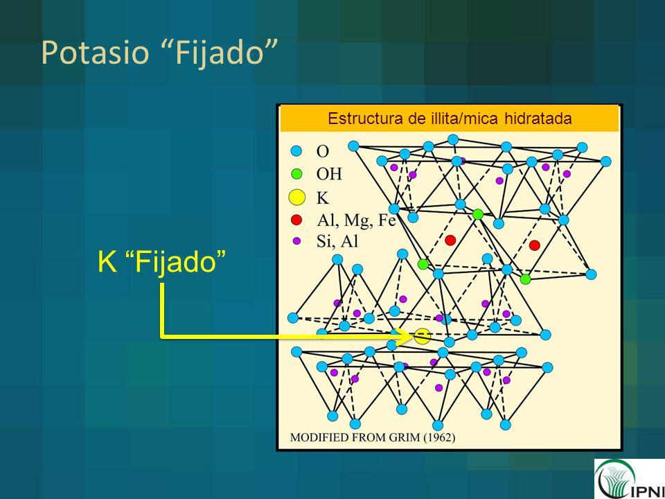 Estructura de illita/mica hidratada