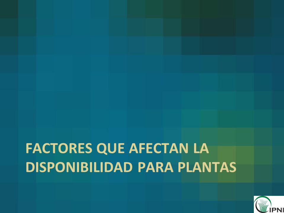 Factores que afectan la disponibilidad para plantas