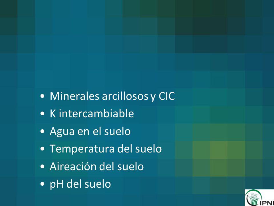Minerales arcillosos y CIC K intercambiable Agua en el suelo