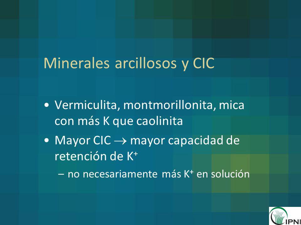 Minerales arcillosos y CIC