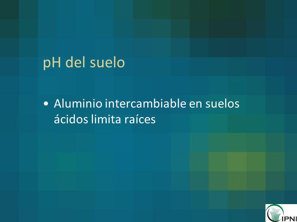 pH del suelo Aluminio intercambiable en suelos ácidos limita raíces