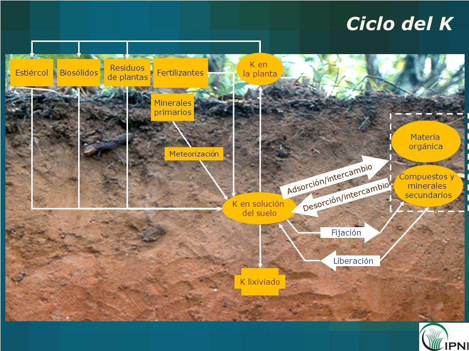 Ciclo del K K en la planta Estiércol Biosólidos Residuos de plantas