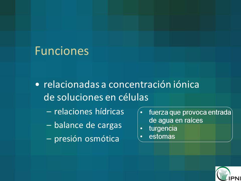 Funciones relacionadas a concentración iónica de soluciones en células