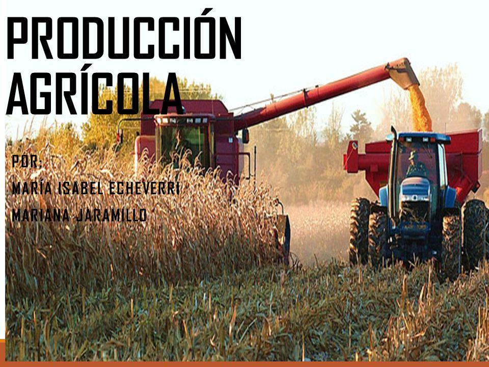 Por: María Isabel Echeverri Mariana Jaramillo