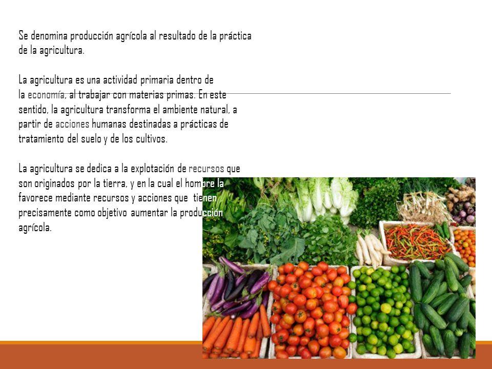 Se denomina producción agrícola al resultado de la práctica de la agricultura.