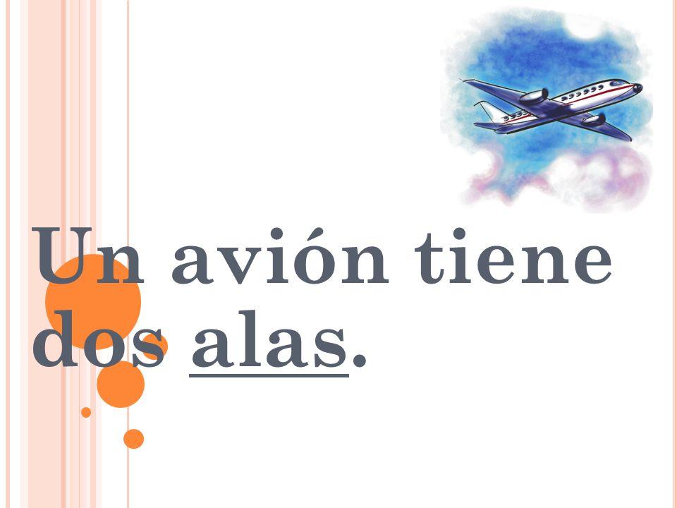 Un avión tiene dos alas.