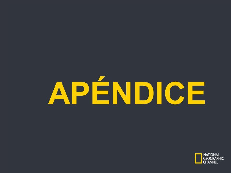 APÉNDICE Typo corrected