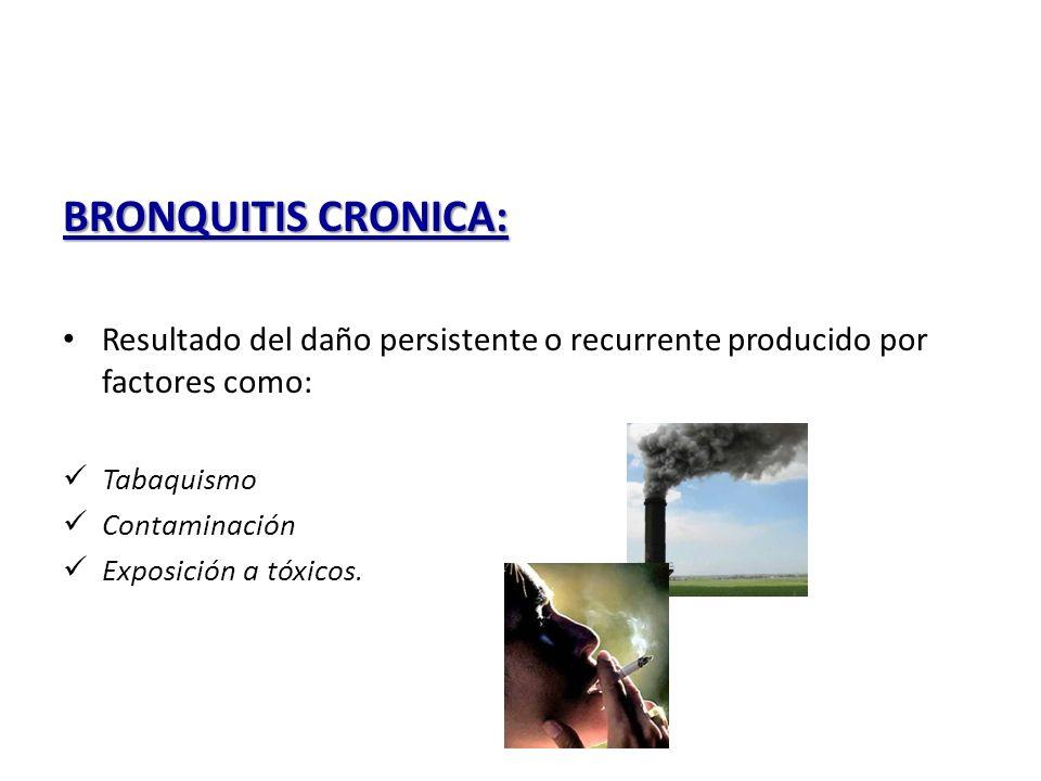 BRONQUITIS CRONICA: Resultado del daño persistente o recurrente producido por factores como: Tabaquismo.
