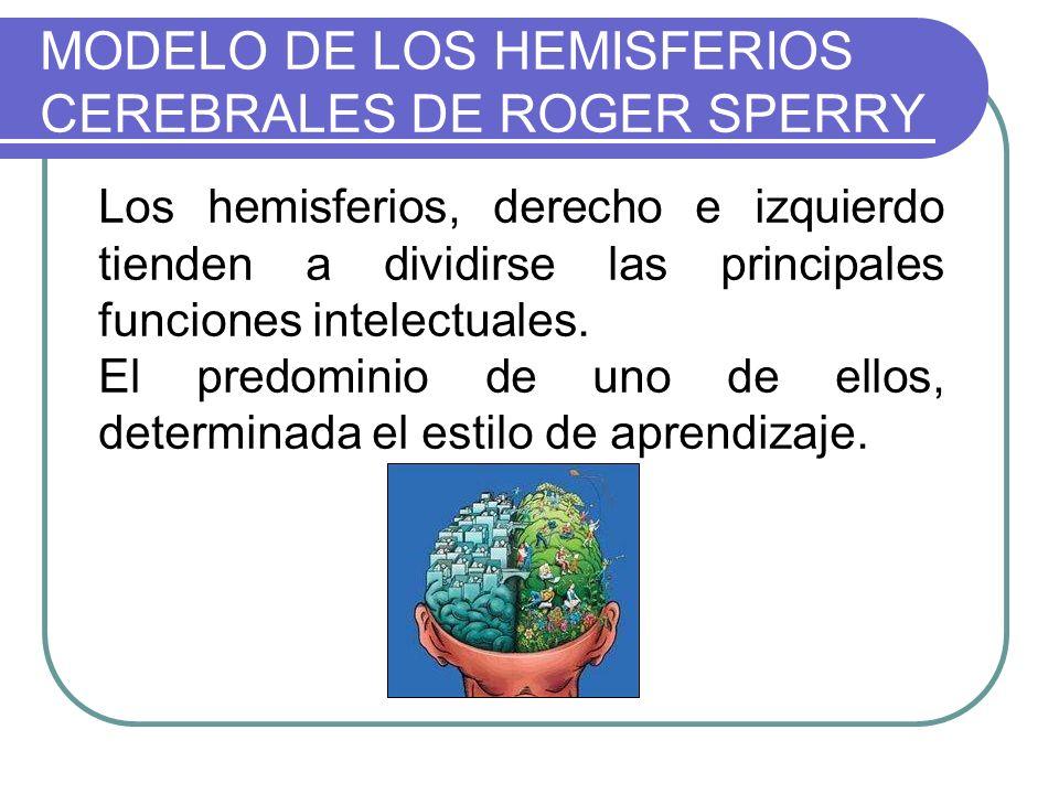 MODELO DE LOS HEMISFERIOS CEREBRALES DE ROGER SPERRY