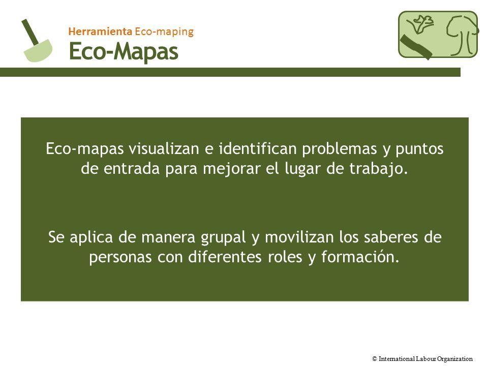 Herramienta Eco-maping