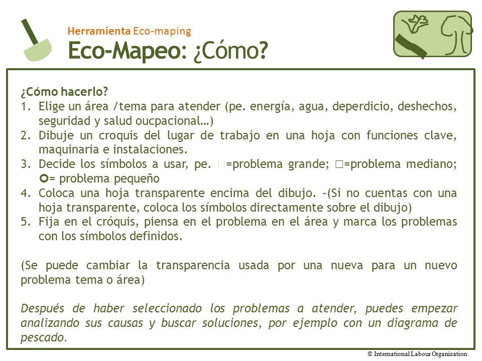 Eco-Mapeo: ¿Cómo Herramienta Eco-maping ¿Cómo hacerlo