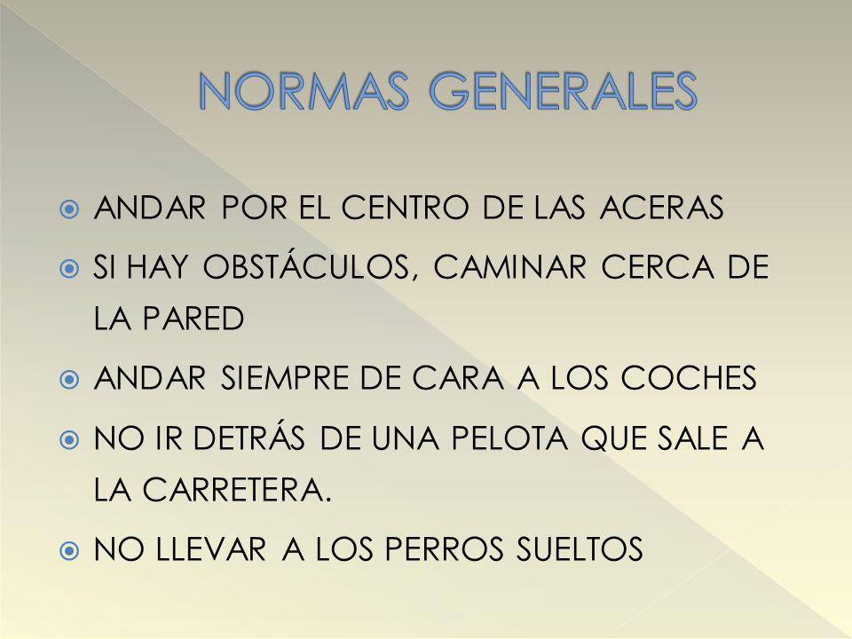 NORMAS GENERALES ANDAR POR EL CENTRO DE LAS ACERAS