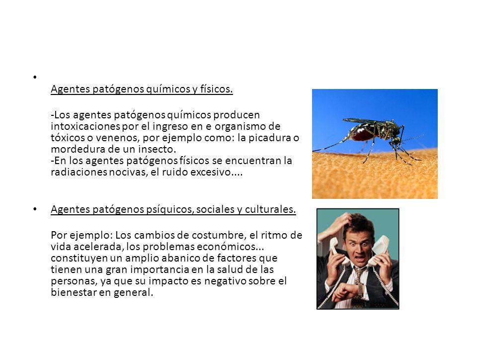 Agentes patógenos químicos y físicos.