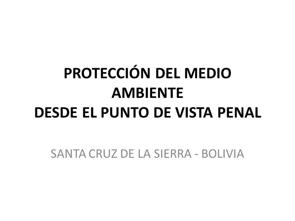 PROTECCIÓN DEL MEDIO AMBIENTE DESDE EL PUNTO DE VISTA PENAL