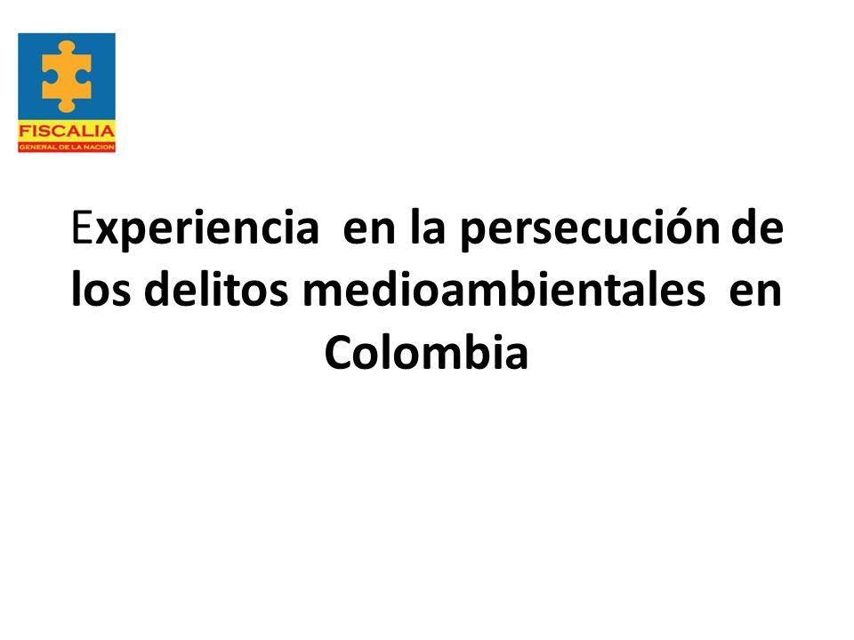 Experiencia en la persecución de los delitos medioambientales en Colombia