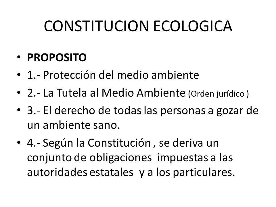CONSTITUCION ECOLOGICA