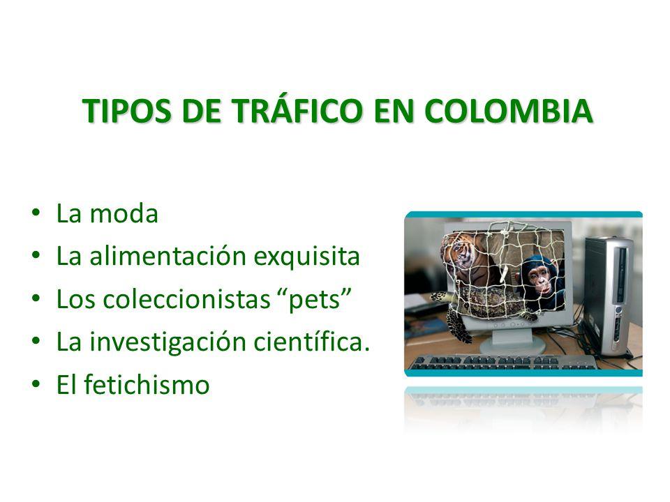 TIPOS DE TRÁFICO EN COLOMBIA