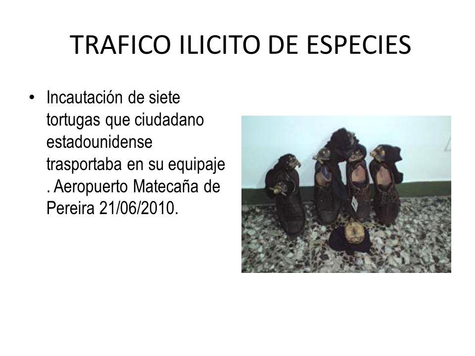 TRAFICO ILICITO DE ESPECIES
