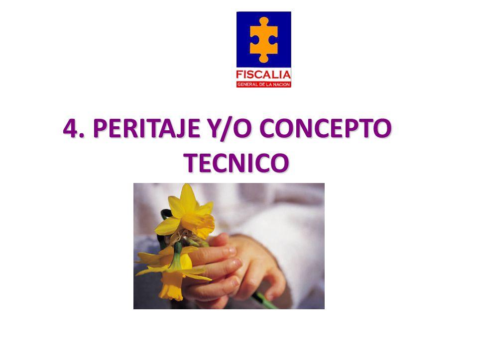 4. PERITAJE Y/O CONCEPTO TECNICO