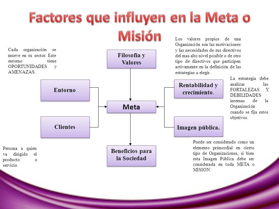 Factores que influyen en la Meta o Misión