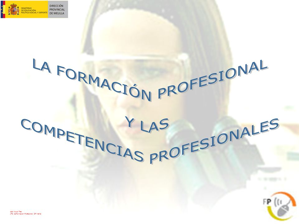 LA FORMACIÓN PROFESIONAL Y LAS COMPETENCIAS PROFESIONALES