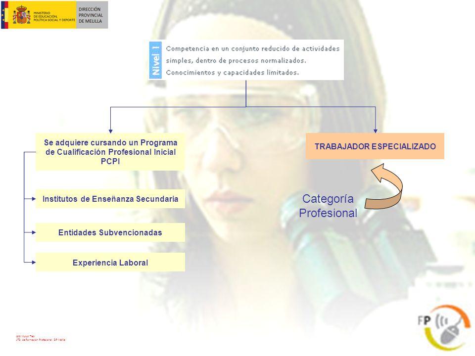 Categoría Profesional Se adquiere cursando un Programa