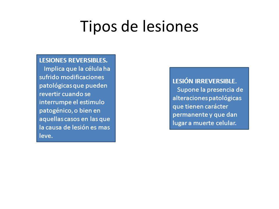 Tipos de lesiones LESIONES REVERSIBLES.