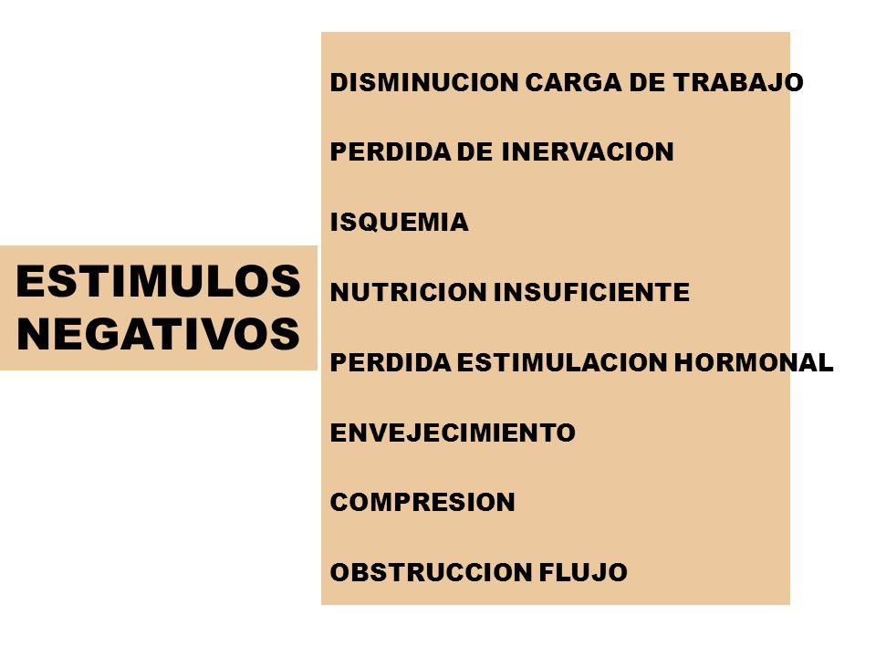 ESTIMULOS NEGATIVOS DISMINUCION CARGA DE TRABAJO PERDIDA DE INERVACION