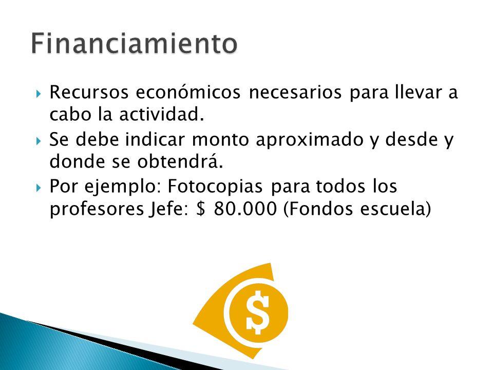 Financiamiento Recursos económicos necesarios para llevar a cabo la actividad. Se debe indicar monto aproximado y desde y donde se obtendrá.