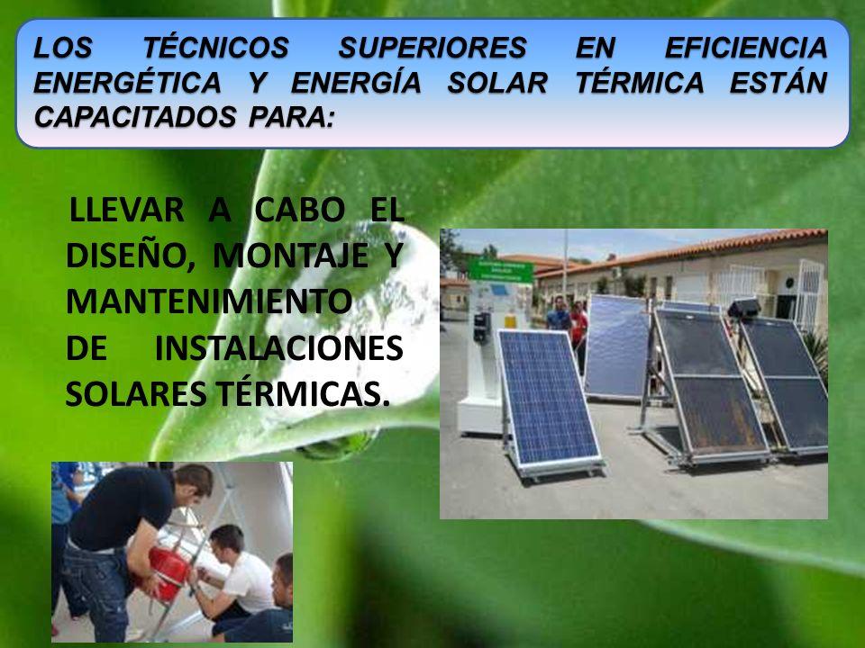 Los Técnicos Superiores en Eficiencia Energética y Energía Solar Térmica están capacitados para: